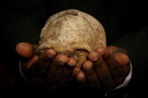 Откриха останки на най-древния човешки вид отпреди 1,8 млн. години