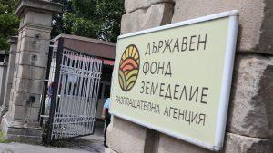 """Фонд """"Зедемелие"""" спира проверките в зони с африканска чума"""