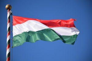 Учители в Унгария протестират в Инстаграм заради ниски заплати