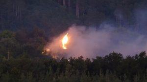 Продължава борбата с пожарите в Южна България