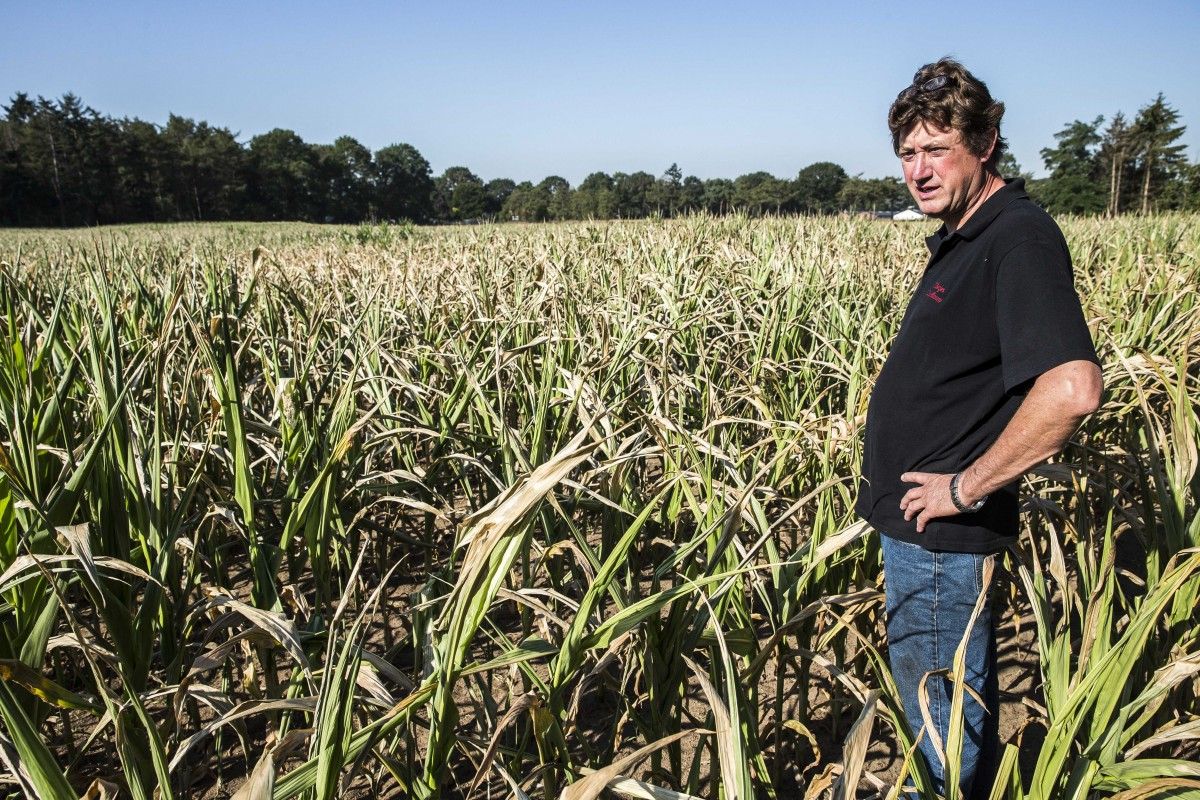 Малки и средни земеделци учредиха своя асоциация, с която ще се защитават пред институциите