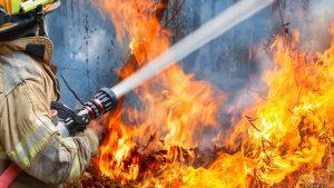 Пожар евакуира туристи от плажовете на Елафонисос в Гърция