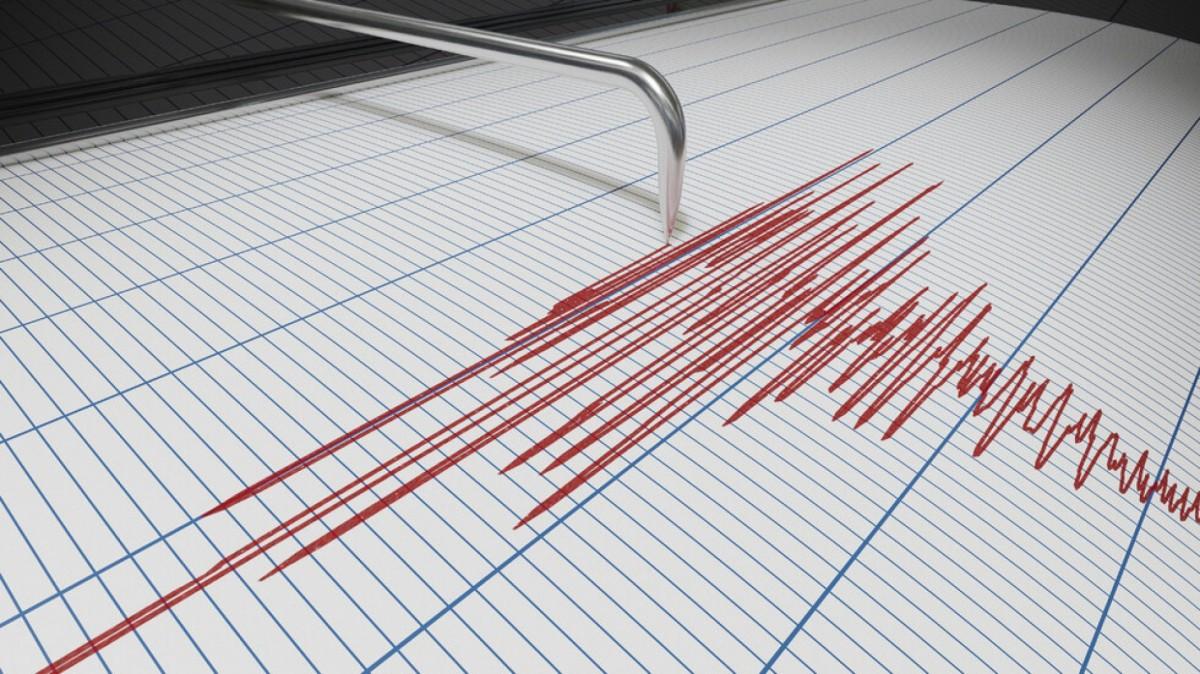 Бургазлии за земетресението: Разклатиха се лампи и картини