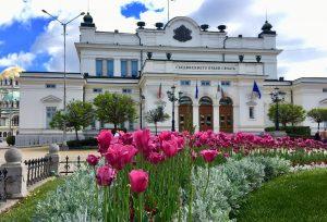 """""""Тренд"""": Българите искат честен, млад и некорумпиран кмет"""