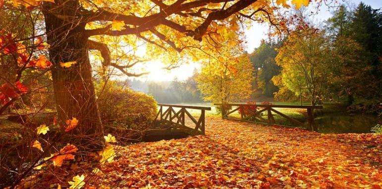 Настъпва есента
