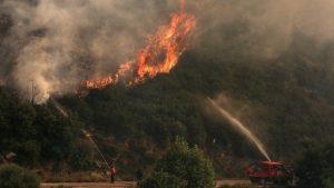 Горски пожари предизвикаха евакуация в САЩ