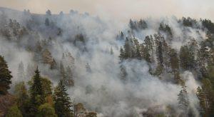 """Военни и хеликоптер втори ден гасят пожара в природен парк """"Рила"""""""