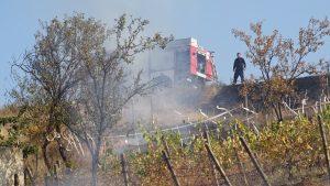 10 дка треви и храсти изгоряха при пожар край Благоевград