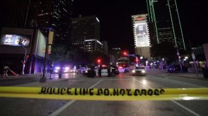 МВнР: Три от жертвите на стрелеца в Чикаго са българи