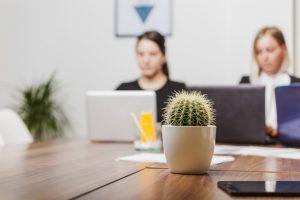 Полезни и вредни растения в дома