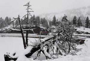 Сняг и дъжд причиниха хаос в Австрия